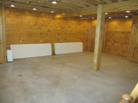 Basement area... in progress